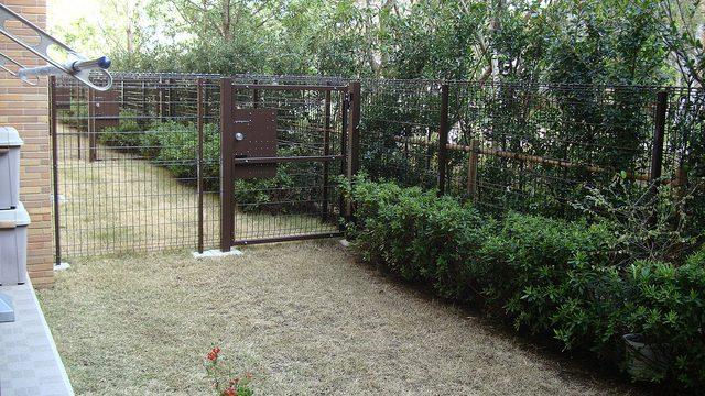 冬でも芝生を緑にしたいなら!「西洋芝」を植えるのが良いぞ!
