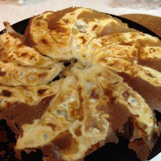 カンタンに羽付き餃子を作って綺麗にお皿に乗せられる餃子の焼き方を伝授するぞ!