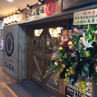 【武蔵小杉】美味い地鶏料理が食える!「塚田農場」が11/28〜オープンしたぞ!