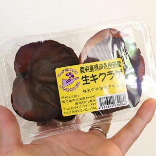 生キクラゲはしゃぶしゃぶで!Oisix(おいしっくす)の野菜が新鮮で美味しいぞ!