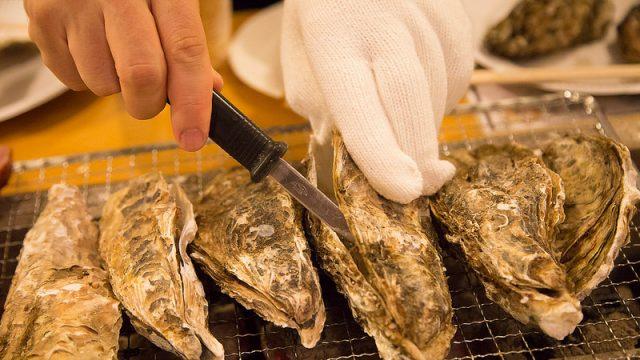 【11/3オープン!】かき小屋 by Tycoonで、横浜の海を眺めながら広島のカキや魚介・肉を堪能できるぞ! #かき小屋タイクーン