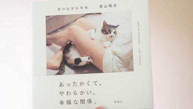 青山裕企さんの新写真集!「ネコとフトモモ」が…良いぞ!