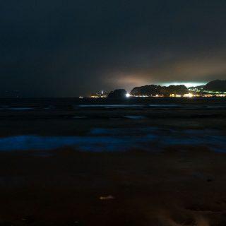 鎌倉の材木座海岸で赤潮発生からの夜光虫が光る夜の海を見てきたぞ! #鎌倉 #夜光虫