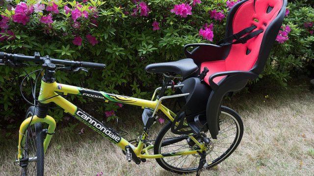 マウンテンバイクやロードバイクでも子どもを載せれる!「HAMAX」のチャイルドシートが良いぞ!