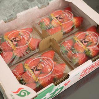 ふるさと納税で「さがほのか」!5000円でいちごが1箱ドーンと届いたぞ!