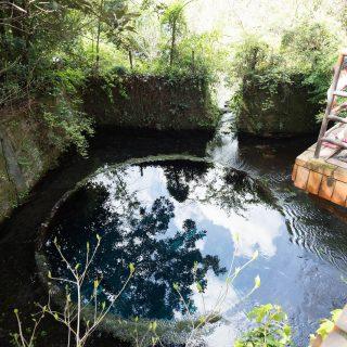【静岡】日本三大清流の1つ!富士山から100万トンが湧き出る「柿田川湧水」が幻想的だぞ!