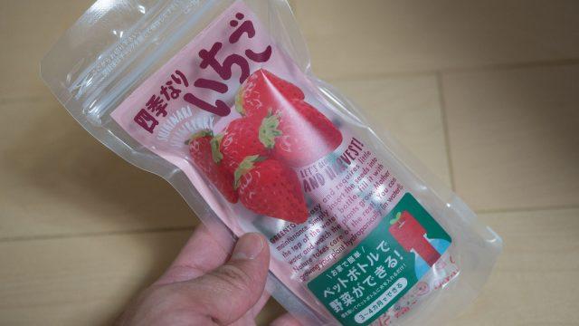 ペットボトルでイチゴ栽培!マンション住まいの人でも作れるので食育に良さそうだぞ!