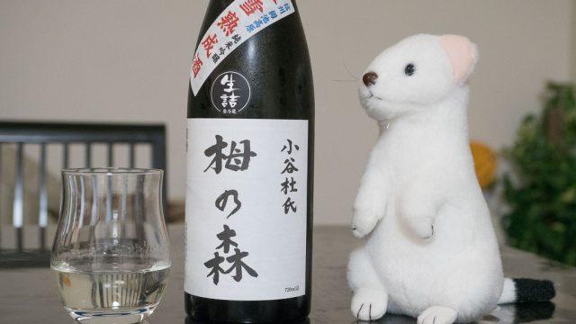 40日間雪の中で熟成させた幻の日本酒!「栂の森 氷雪熟成酒 」がめっちゃ美味いぞ! #いちばん美しいところ