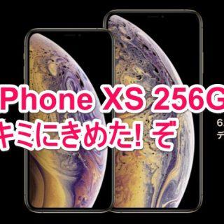 iPhone XSの256GBを購入決定!決めた理由を説明するぞ!