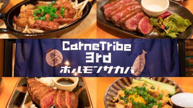 【門前仲町】気軽に美味しいお肉の立ち飲み屋!「カルネトライブ3rd ホルモン酒場」がオススメだぞ!