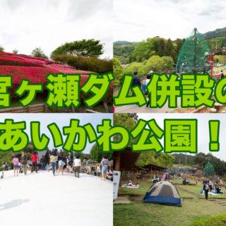 宮ケ瀬ダム併設の「あいかわ公園」が4万本のツツジに、巨大アスレチックやふわふわドーム、工芸体験ができて子連れには最高の遊び場だぞ!