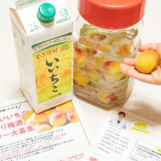 【レシピあり】焼酎「いいちこ」と南高梅で梅酒づくり!3ヶ月後が楽しみだぞ! #いいちこアンバサダー