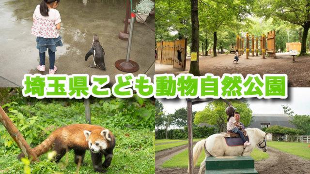 「埼玉県こども動物自然公園」は自然と遊具と動物いっぱいで子連れで1日楽しめるぞ!