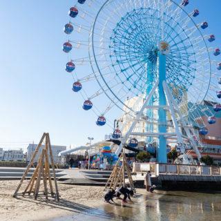 清水港すぐそば!エスパルスドリームプラザは観覧車・清水すし横丁・海辺遊びができて子連れに良いぞ!