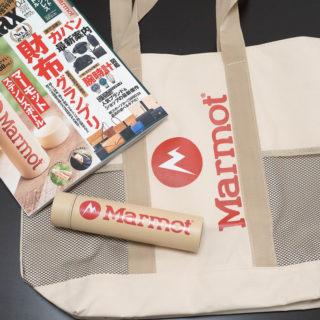 雑誌MonoMax4月号の付録!Marmotの保冷・保温バッグと200mlのステンレスボトルだぞ!