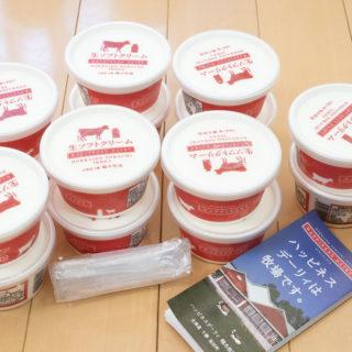 北海道池田町のふるさと納税返礼品「生乳・生クリーム75%以上のアイスクリーム」がメッチャ美味しいぞ!