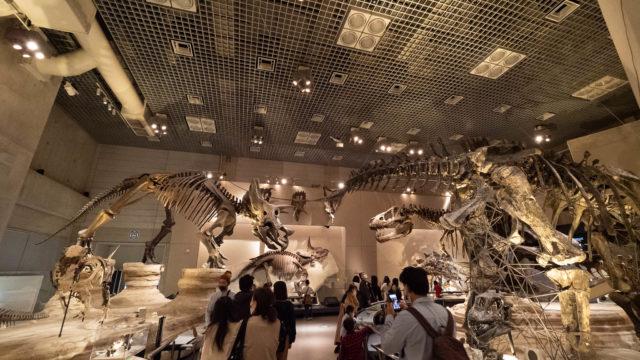 子どもも大人も興味津々!上野「国立科学博物館」が1日楽しめるぞ!